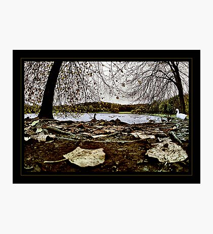 Earth bound Photographic Print