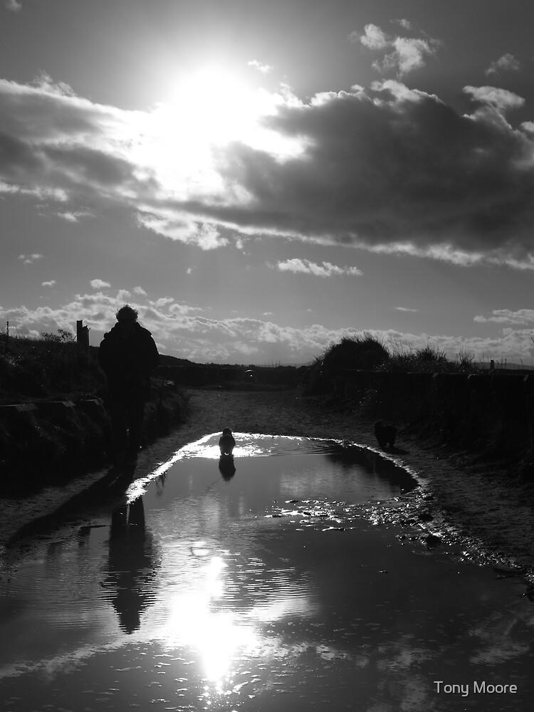Sunshine on a rainy day by Tony Moore