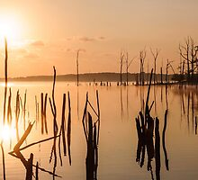 Reservoir at Sunrise  by Debra Fedchin