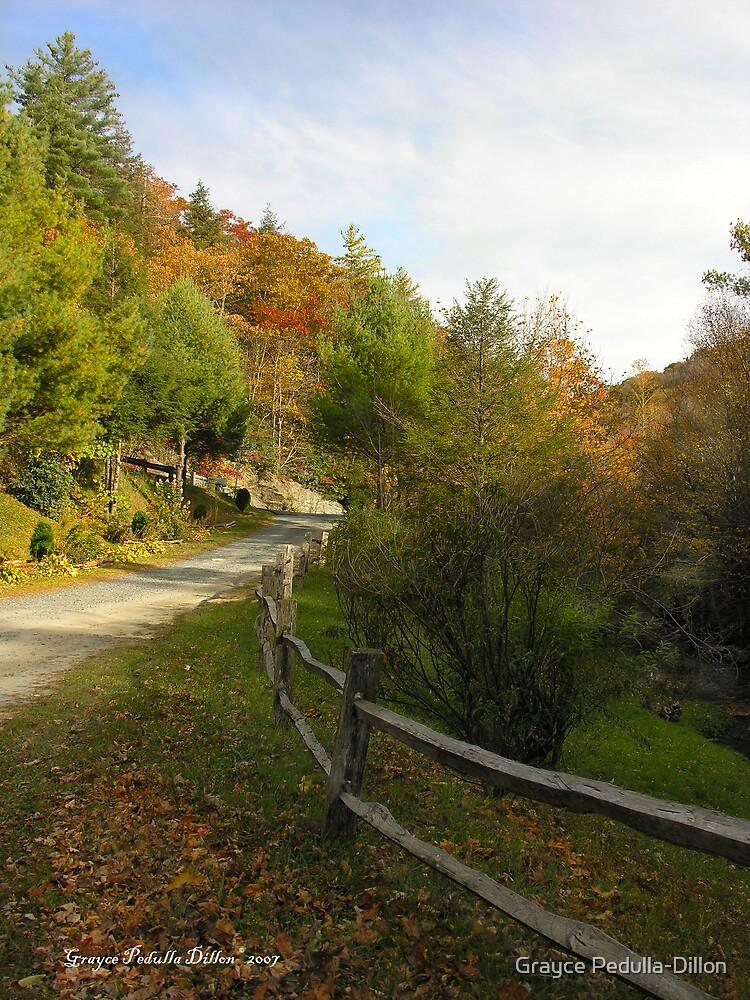 Autumn Path by Grayce Pedulla-Dillon