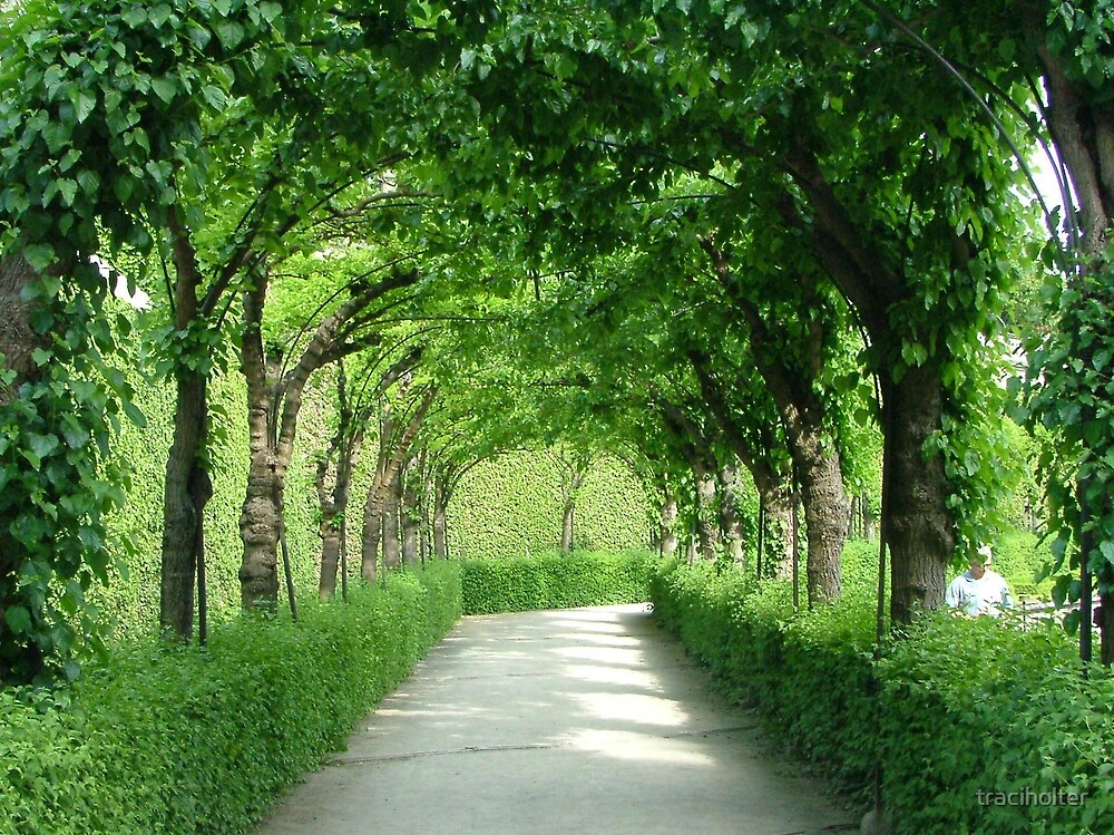 Residenz Gardens Alee by traciholter