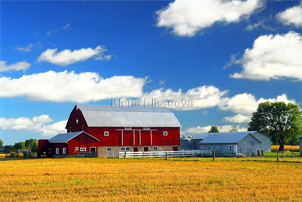 Landscape with red barn by Elena Elisseeva