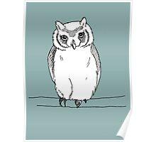 Owl Fanimal Poster