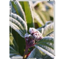 A touch of Frost iPad Case/Skin