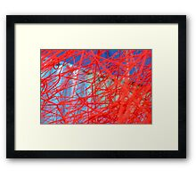 Red and Blue Web Framed Print