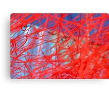 Red and Blue Web Canvas Print