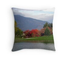 Fall In The Park Throw Pillow
