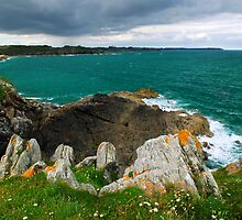 Atlantic Coastline In Brittany, France by Elena Elisseeva
