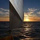 Sunset and a Sail by Deborah Clearwater