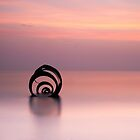 Mary's Shell by Jeanie