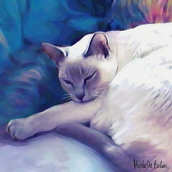 Sleeping cat by Michelle Behar