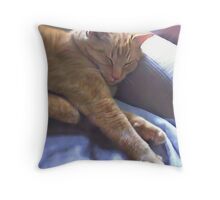 Sleeping Yellow Cat Throw Pillow