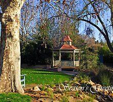 Wagga Wagga Botanic Gardens by Darren Stones