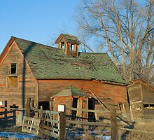 Old Barn in Late Winter by bluerabbit