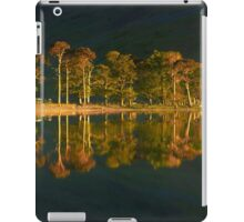 Reflected Pines iPad Case/Skin