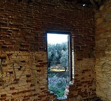 A View to the Olive Grove by aeolia
