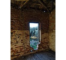 A View to the Olive Grove Photographic Print