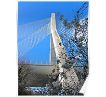 Mary McAleese Boyne Valley Bridge Poster