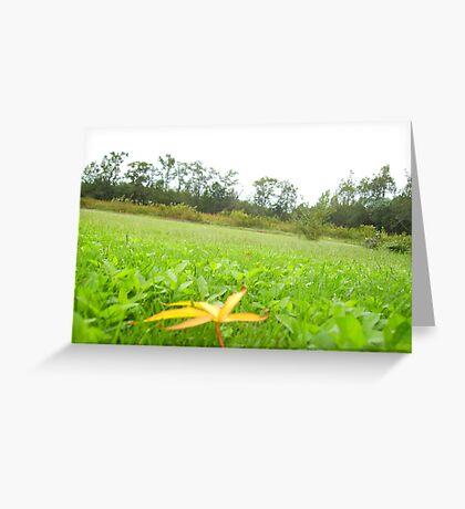 Blurred leaf Greeting Card