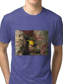 Yellow Boxfish Tri-blend T-Shirt