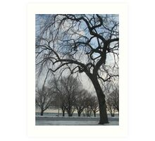 Trees at Lakeshore  Art Print