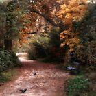 Autumn  by Johanna26
