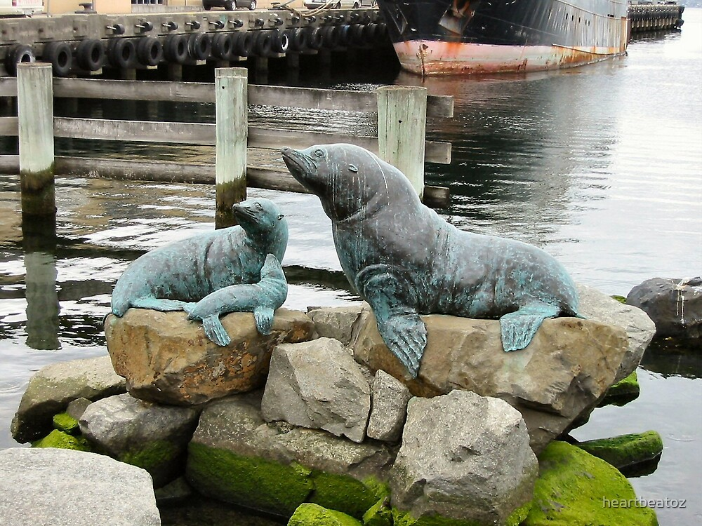 Seals by heartbeatoz