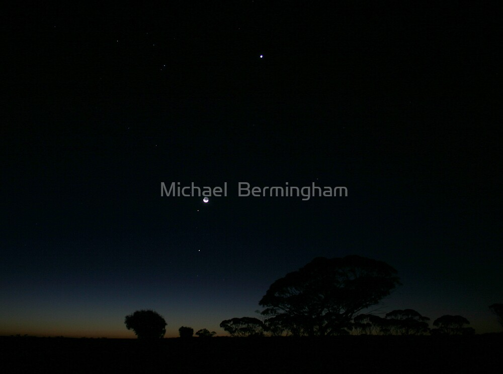 The Night is for Hunting by Michael  Bermingham
