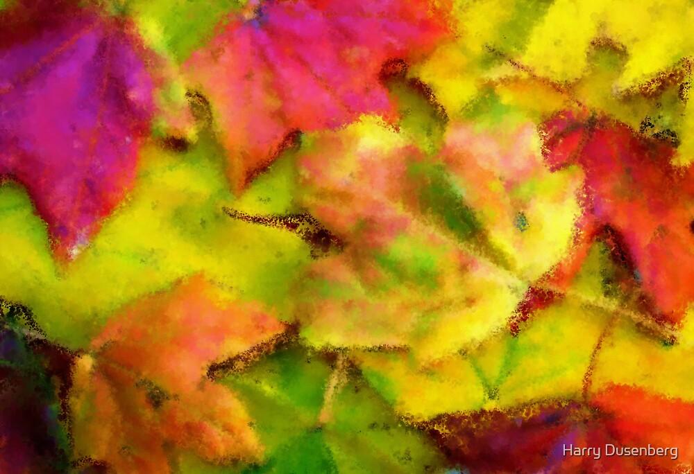 Leaves of fall by Harry Dusenberg