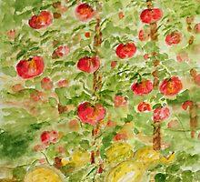 tomatos & squash by daniels