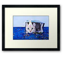 Birthday Kitten Framed Print
