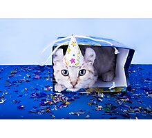 Birthday Kitten Photographic Print