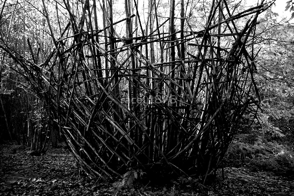 The Giant Wicker basket in the woods by racey1876