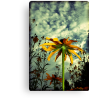 6.30 Sky, Part II Canvas Print