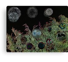 Merry Christmas with firework  Canvas Print