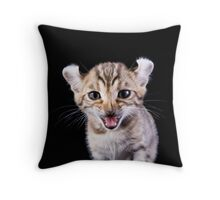 Funny Kitten Throw Pillow
