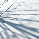 Makin' Tracks by Monnie Ryan