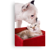 Puppy and Kitten Kisses Canvas Print