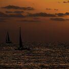 Black sails by Matt Dawdy