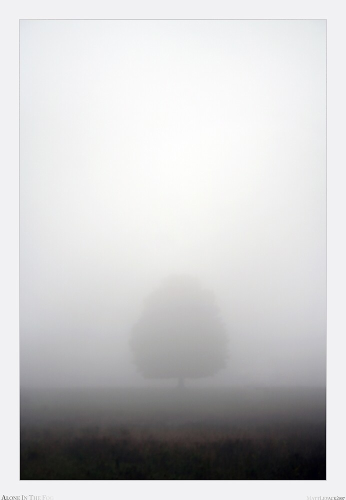 Alone In The Fog by Matt Levack