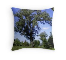 Beauty in imperfection Throw Pillow