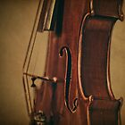 Violin Profile by Kadwell