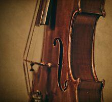 Violin Profile by Kadwell
