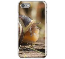 The Timid Snail iPhone Case/Skin