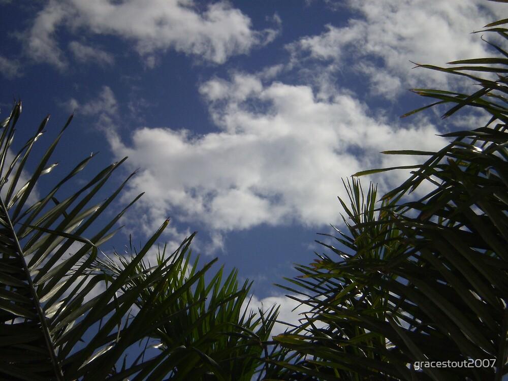 WHITE CLOUDS & BLUE SKY by gracestout2007