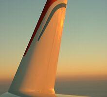 Flights of Fancy 3 by Mrsh