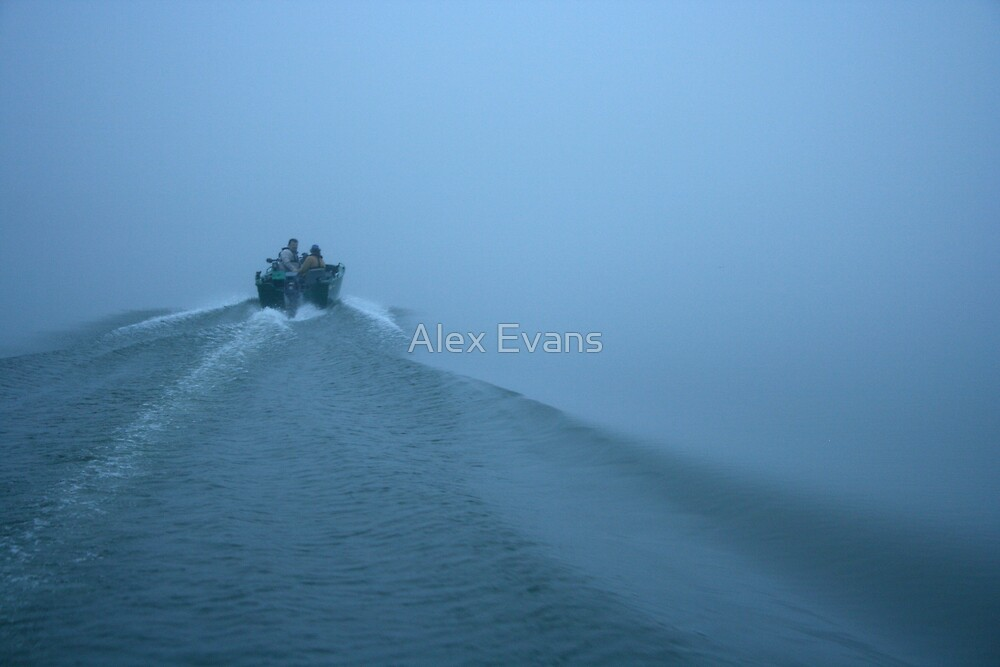 Into the fog by Alex Evans