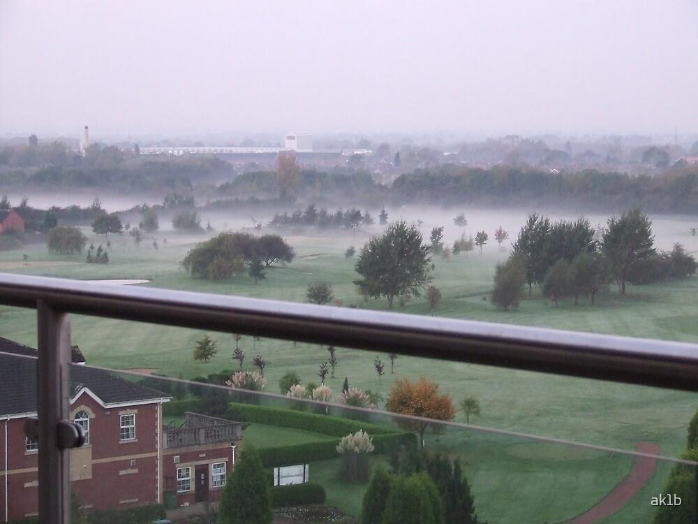 Early Fog by ak1b