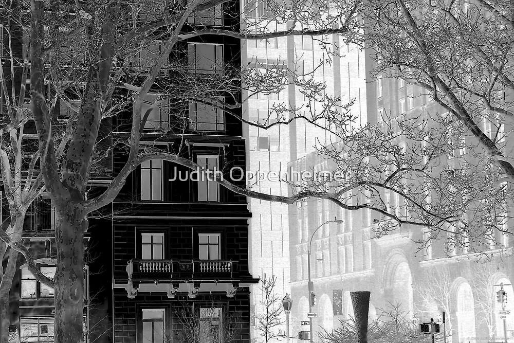 Madison Park in Winter by Judith Oppenheimer