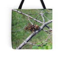 clutch of spiders Tote Bag